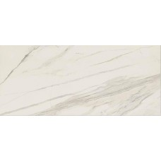CALACATTA Smooth 120x120x6